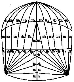 Womper Spinnaker