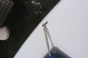 Cover hook and bungee